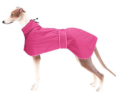 Brabtod Greyhound - Abrigo de invierno para perro para invierno, resistente al...