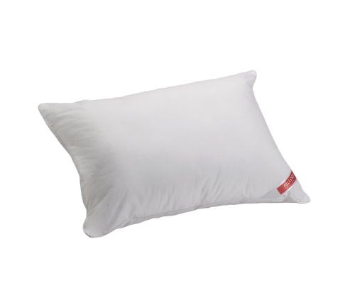 Aller-Ease Hot Water Washable Allergy Pillow, Standard, Firm