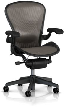 Hot Sale Aeron Chair by Herman Miller - Home Office Desk Task Chair Fully Loaded Highly Adjustable Medium Size (B) - Lumbar Back Support Cushion Graphite Frame Classic Lead Pellicle