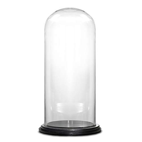 CYS EXCEL Dome Glass Cloche with Black Wood Base (H:15' D:7') | Multiple Size Choices Decorative Showcase Display for Antique Collectibles | Bell Jar Terrarium & Dessert Cover