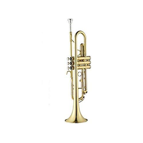 WYKDL Gold Messing Standard-Trompete mit Hard Case Handschuhe Mundstück und Ventilöl Optional Tropfen B Anfänger Spielen Grading Professionelle Trompete