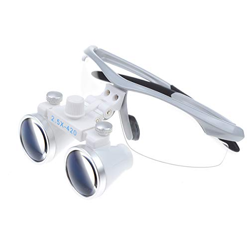 Aries Outlets 2.5X420mm Dental Loupes Binocular Magnifier Medical Surgical Glasses Frame (Silver)