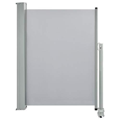 vidaXL Seitenmarkise Ausziehbar 100x300cm Grau Sichtschutz Windschutz Markise