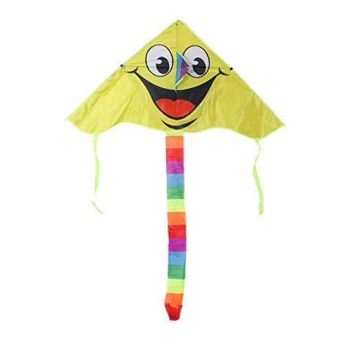 RG-FA Drachen mit lächelndem Gesicht für Kinder, Outdoor-Sport, Smiley-Animation, fliegende Drachen