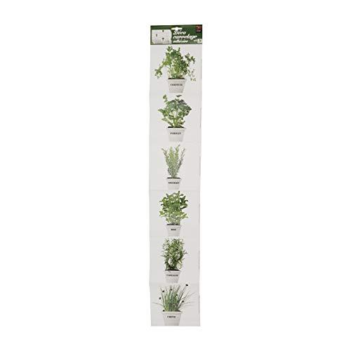 Plage Plantas Aromáticas Decoración Adhesiva para Azulejos, Vinilo, Verde, 15x15 cm, 6 Unidades