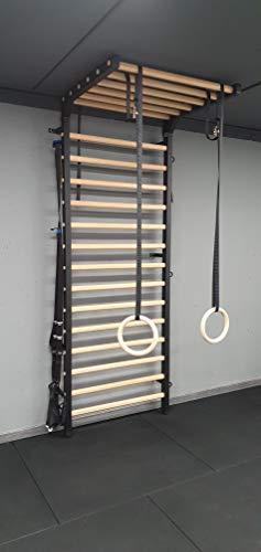 ARTIMEX Sprossenwand mit Klimmzug für Physiotherapie und Gymnastik - Wird in Heimen, Fitnessstudios, Kliniken und Fitnesscentern verwendet - aus Metall/Holz, 240 x 90 cm, Artikelnr. 277/Schwarz