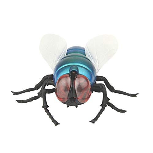 insekt fliege