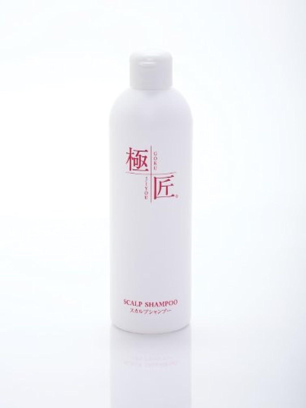 絵戸惑う津波極匠スカルプシャンプー 300ml (無香料)