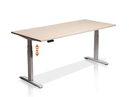 moebel-eins Elektrisch höhenverstellbarer Schreibtisch Office One mit Memory-Steuerung und Softstart/-Stop, Material Tischplatte Dekorspanplatte, 160x80 cm, ahornfarbig, grau