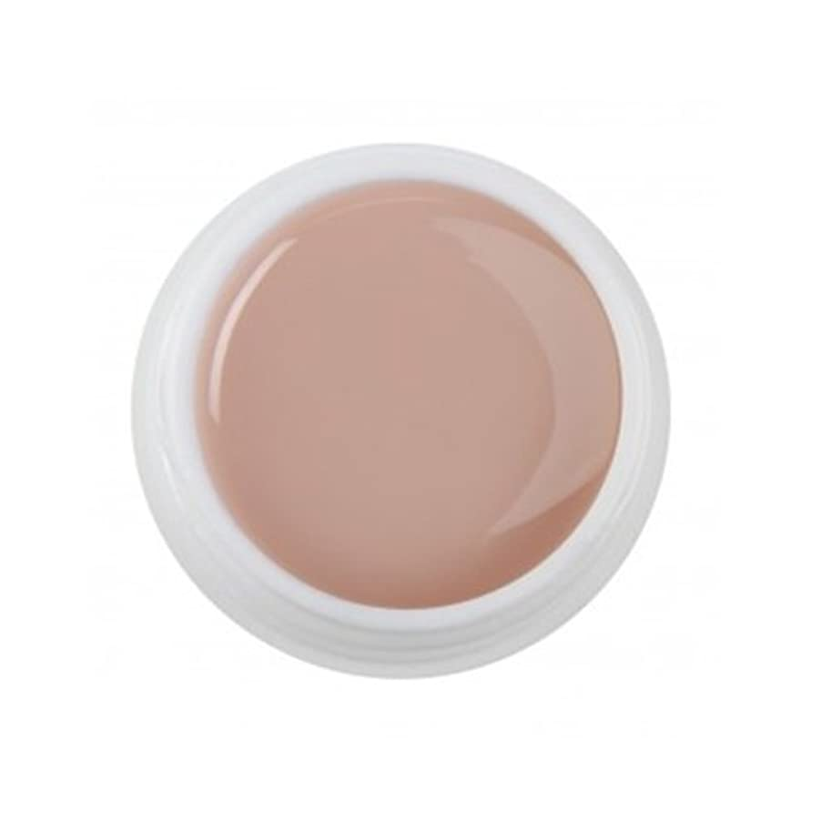 海嶺肖像画休日Cuccio Pro - T3 UV Colour Gel - Opaque Nude - 1oz / 28g