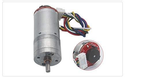 Haoweiwei HWW-DDJQD, 1pc 6v 12v 24v 25 mm Diámetro de Caja de Cambios Micro Gear Motor con Encoder 2phases 11pulses de Salida/Gire Mini codificador Motorreductores (Color : 12 RPM, Size : 6V)