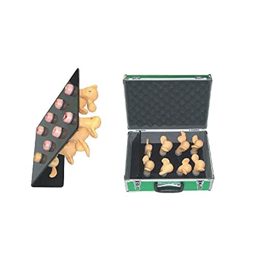 FTFTO Home Equipment Modelo de útero Humano Modelo de anatomía de Entrenamiento de trastornos de Lesiones de Cuello uterino avanzado para ginecología Estudio médico Pantalla de enseñanza (8 Pi