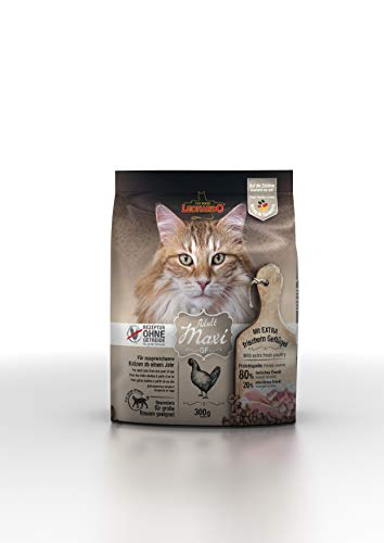 Leonardo Adult GF Maxi [300g] Katzenfutter | Getreidefreies Trockenfutter für Katzen | Alleinfuttermittel für große Katzenrassen ab 1 Jahr
