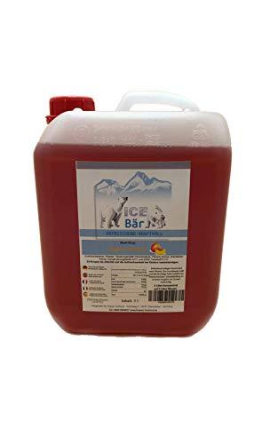 ICE BÄR Sirup Pfirsich Slush Konzentrat Slush Ice / Slush AZO FREI Eis 5 Liter Ergibt 30 Liter Slush