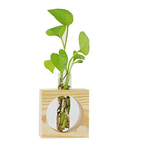 Alftek Glazen tafelvaas, voor planten, terrarium, glazen pot met houten houder, voor decoratie thuis, 1 stuks