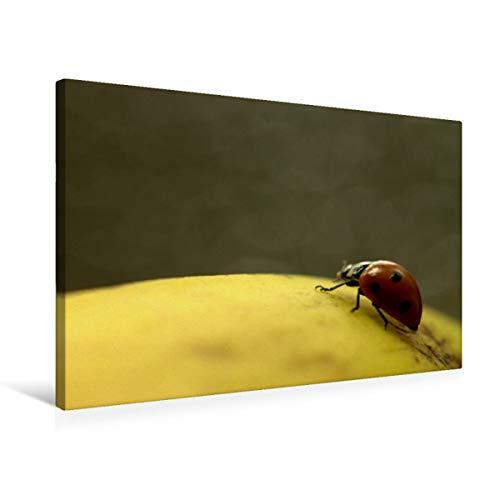 Premium textiel canvas 75 cm x 50 cm dwars lieveheersbeestje op gele banaan