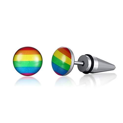 Mannen Vrouwen Stud Oorbellen Regenboog Sticker Gay Lesbische LGBT Kameraad roestvrij staal Kleurrijke Oorstekers Sieraden