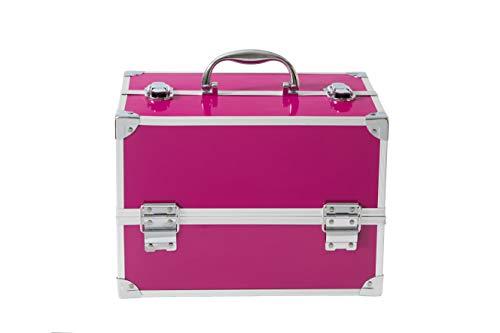 Maletín de Maquillaje Professional Color Pink Train Case - The Color Workshop - Un Kit de Maquillaje Profesional Completo en un Gran Maletín Plateado y Elegante para Llevar Siempre Contigo