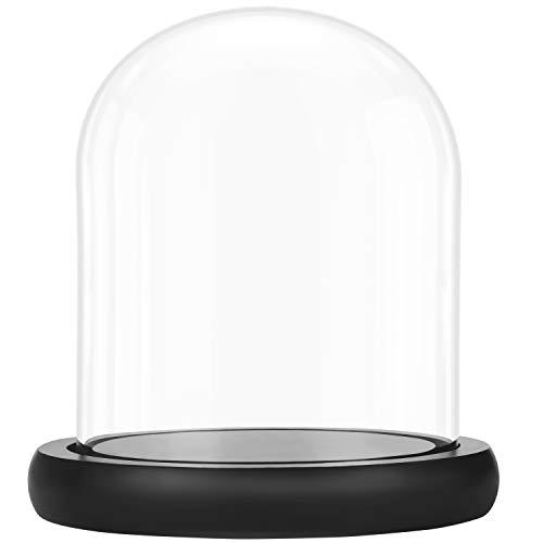 Belle Vous Deko Glasglocke mit Teller Holz Sockel Schwarz - 17 cm - Klare Dekorative Glas Deko Vitrine mit Tablett für Lichterketten Kuchenglocke Glas, Tafelschmuck und Antiquitäten