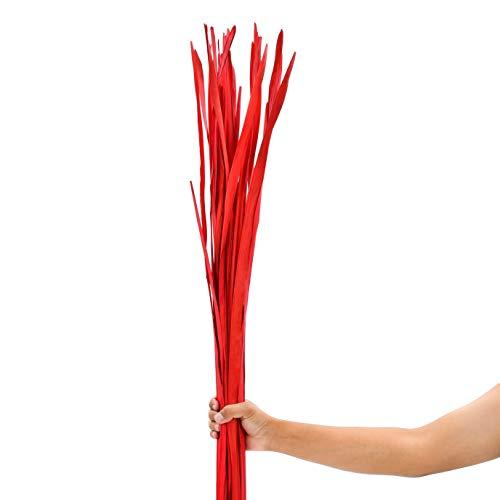 Leewadee Dekobündel für Bodenvasen Trockengesteck Dekogras Dekozweige, 120 cm, Palmblatt, rot