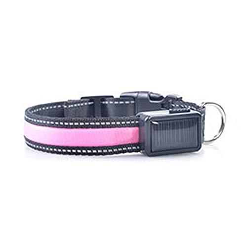 Tuzi Qiuge Haustierel Leine led reflektierende hundhalskragen mit wasserdichte Taschenlampe, Anti-verlorene Marke trifft trieb leitungs Seil Haustier atmungsaktive gemütlich (Color : Pink)