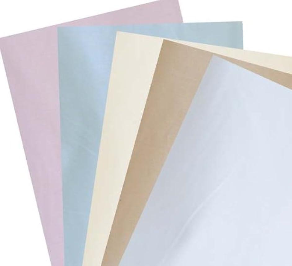 勧告応じるパシフィックアルファソフト 防ダニ 高密度 敷布団カバー ダブル 145×215cm A色ピンク