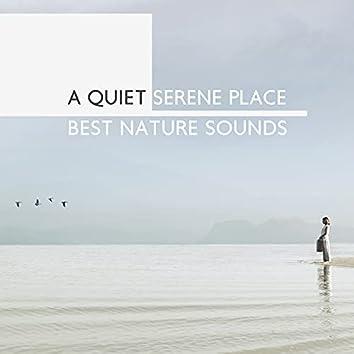 A Quiet Serene Place: Best Nature Sounds