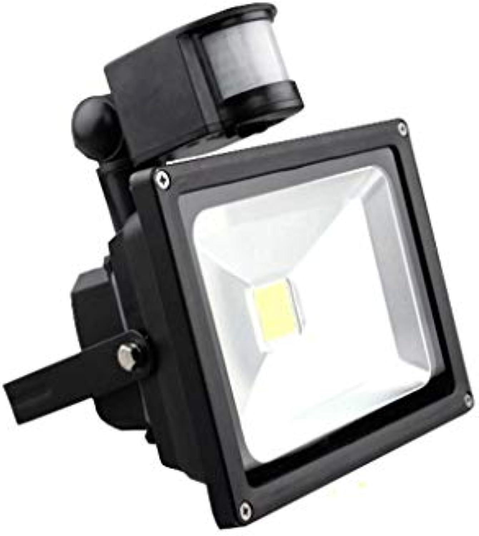 Scheinwerfer LED Strahler Mit Im Freien Super Helles Fluter Bewegungssensor Infrarot-Sicherheitssensor Flutlichtscheinwerfer Flutlicht 12V Auenbeleuchtung (Farbe   20W-Weiß Light)