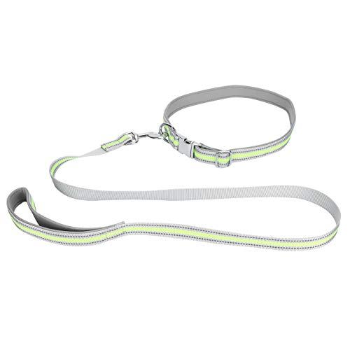 Collar y correa para perro collar y correa Set de cuerda reflectante para perro pequeño y (verde fluorescente, set XS)