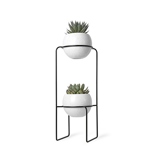 umbra Nesta - Macetero con Niveles, Receptor de DVD/CD con Bluetooth, Negro, Blanco, Tiered Planter, 1, 1