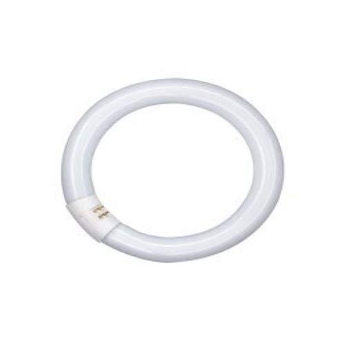 Osram L 32 W/827 C warm circular 26mm tube