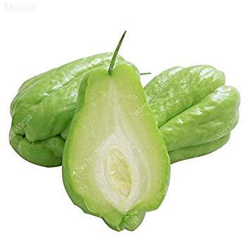 Vistaric 30 Unids/Bolsa Bonsai Semillas De Chayote Al Aire Libre No GMO Calabaza Suculenta Verduras De Frutas Bonsai Planta En Maceta para Macetas Macetas