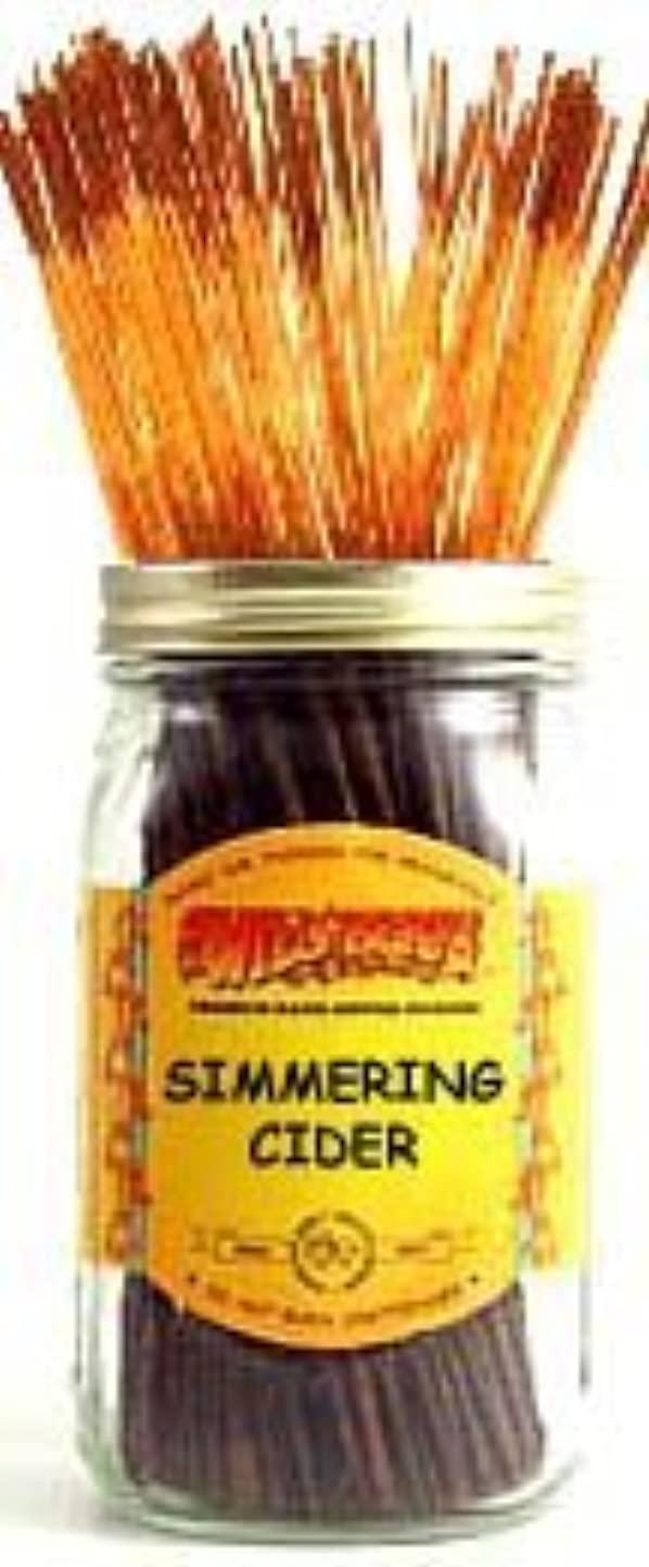 ケイ素遠足接続Simmering Cider - 100 Wildberry Incense Sticks [並行輸入品]
