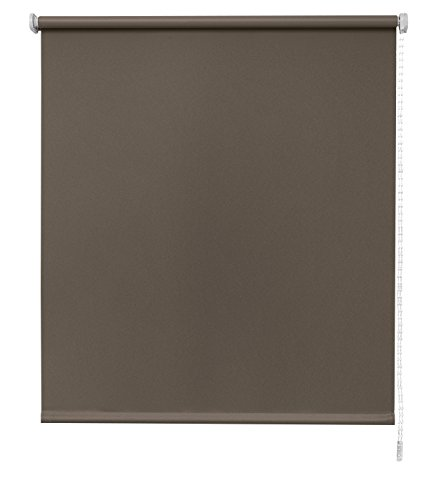 Store Enrouleur Store Basic translucide – , Couleur Cappuccino 90x6x250 cm Cappuccino