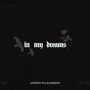 in my dreams (feat. Lilessay)