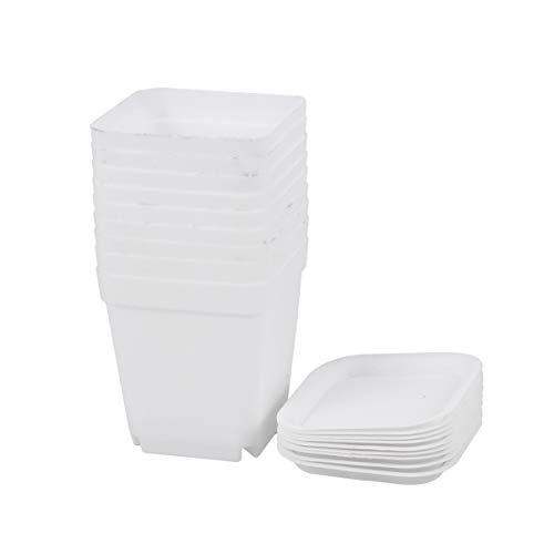 Yardwe 10 Pezzi Vaso da Fiori in plastica Quadrato con piattino Mini vasi da plastica per Piante di plastica con piattino per Giardino 7x7x8cm (Bianco)