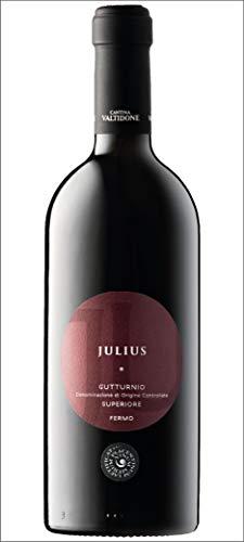 Vinum Merum - Vino - Gutturnio Superiore Julius - 2013-1 Bottiglia da 750 ml