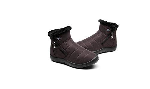 Botas de Nieve Zapatos Mujer,Popoti Botas de Nieve Cremallera Calientes Botines Forradas Cortas Ankle Boots Algodón Zapatos Invierno Aire Libre Sport Botines (Cafe-1, 38)
