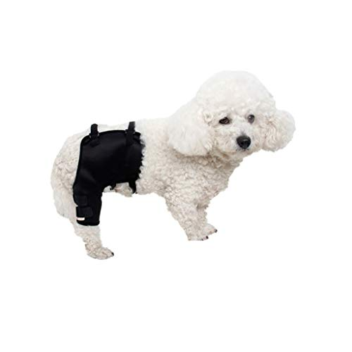 Z-PET Pata De Perro Brace Protector De Mascota Perro Lesión Quirúrgica Rodilleras Fijas Protege Brace Codo Protector Pierna De Perro Cirugía De Perro Herida (Color : Right-Rear Leg, Size : M)