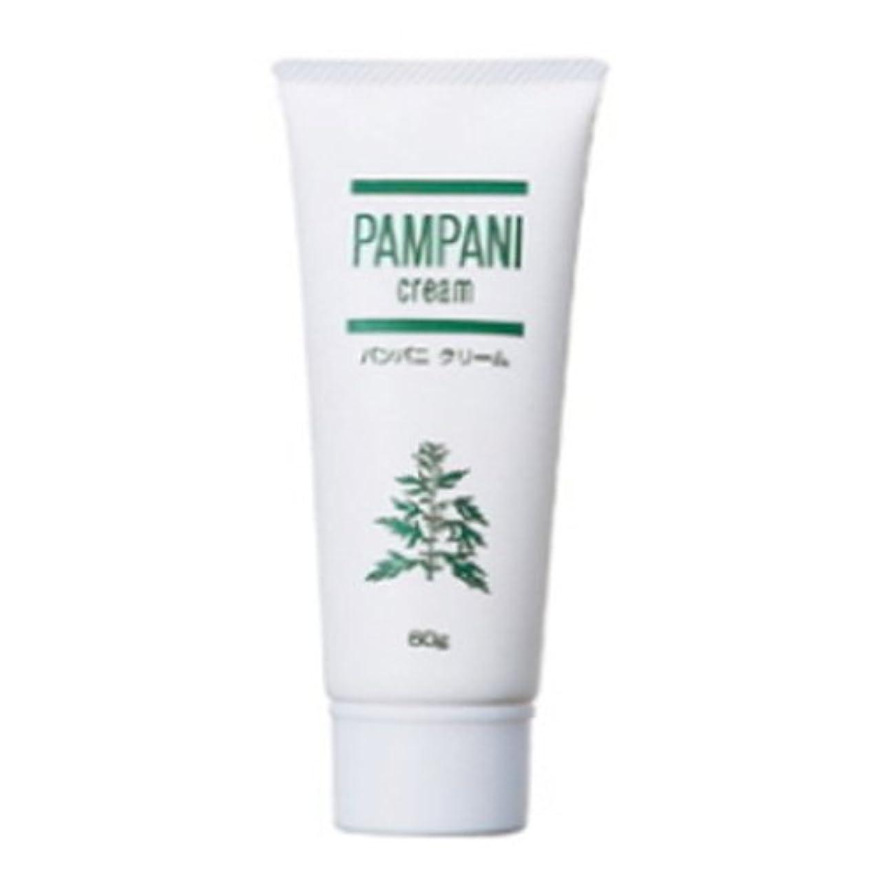 セラー風邪をひくパンパニ(PAMPANI) クリーム 60g