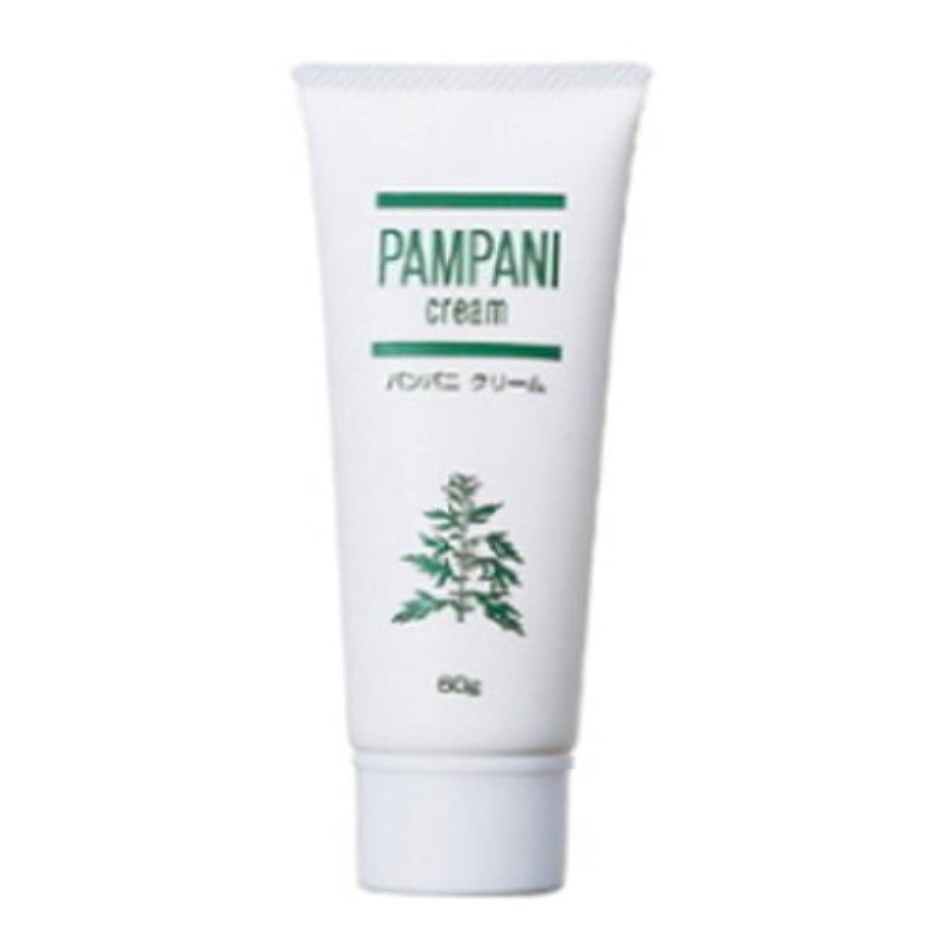 計画才能ホステルパンパニ(PAMPANI) クリーム 60g