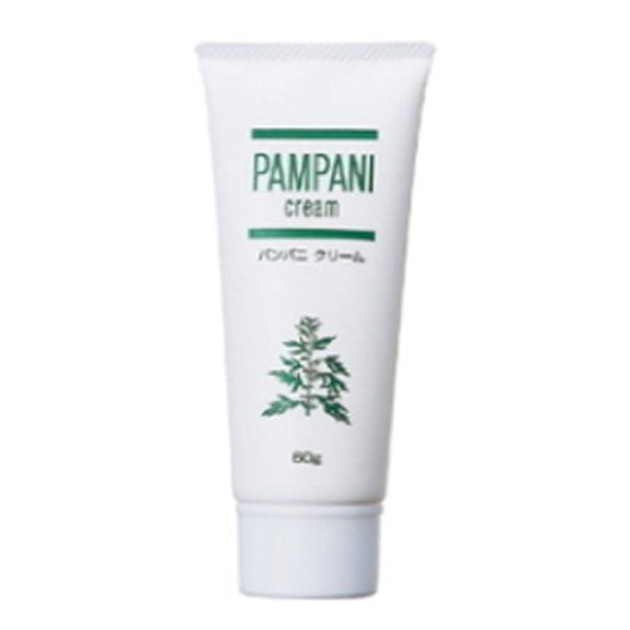 酸化する不適切なバリケードパンパニ(PAMPANI) クリーム 60g