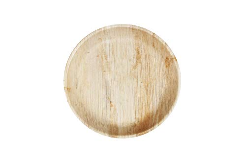 Earth - Piatti usa e getta in foglia di palma, 20,3 cm, piccoli piatti di carta per feste, piatti di bambù da 20 cm, piatti usa e getta per cibi caldi, da campeggio
