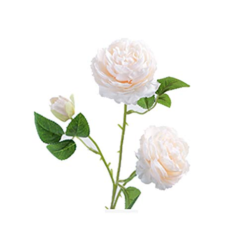GCX Natural Falso peonía Flor Artificial Flor Seca Gran Flor Rosa Falso casa Ramo de la Boda Sala de 5 años Que Viven Calentar (Color : B)