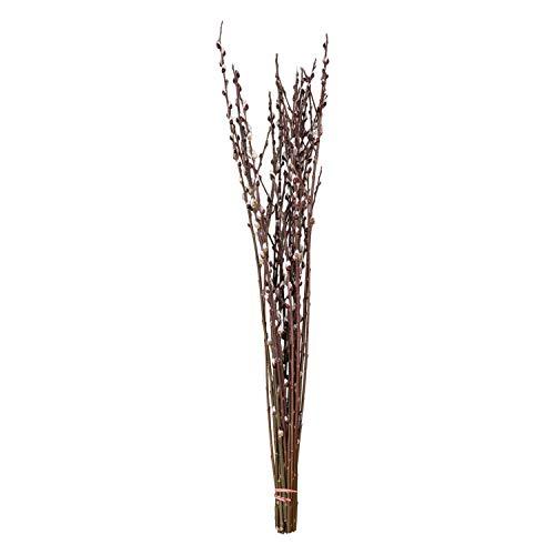 Dekozweig 10 Extra Lange Palmkätzchenzweige ca. 80-90 cm: Salweidezweige für große Bodenvase | Frühlings- und Oster-Deko Natur | Weidenkätzchen | Deko Frühling | Ostern Deko Bodenvase
