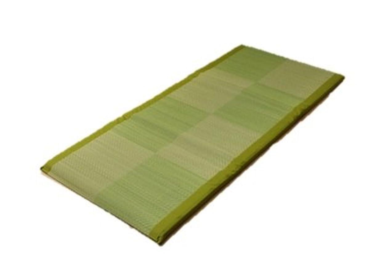 アカデミー魅力的であることへのアピール頼るい草 い草マット 国産 ごろ寝マット フリーマット 『ノア Sらくらく』 (GN約90×200cm)