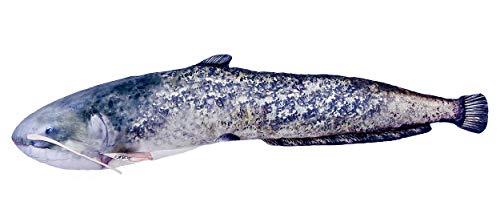 Dekoratives Kissen in Form eines echten Fisches, Wels