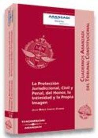 La Protección Jurisdiccional, Civil y Penal, del Honor, la Intimidad y la Propia Imagen (Cuadernos - Tribunal Constitucional)