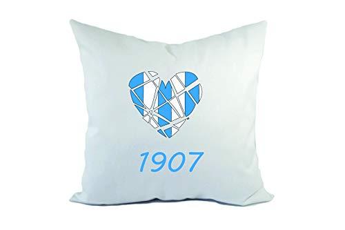 Tipolitografia Ghisleri Cuscino Divano Letto Ferrara biancoazzurro con Imbottitura Formato 40x40 in Poliestere