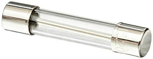 Hayward Glx-f20–10pk 20-amp Verre fusible à BLO Lente kit de Rechange pour Certaines Sel Chlore générateurs, Lot de 10